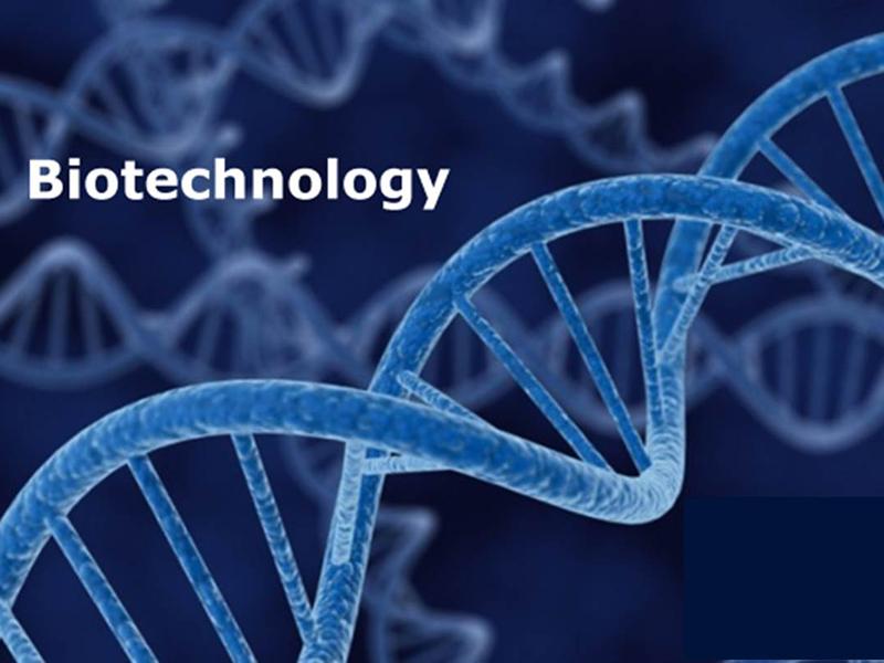 Life Science And Biotechnology (Биотехнологи)